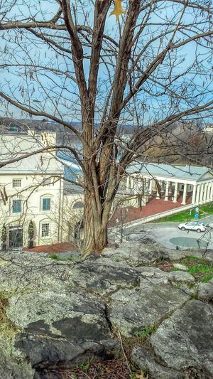 Hanging Out Enjoying Life Awesome_view Photos By Jeanette Showcase: January Beautiful Architecture Beautiful Day Great Day  Walking Around Hi! Philadelphia Leaf 🍂 Tree View From Above Urban Spring Fever The Architect- 2016 Eyeem Awards Lost In The Landscape