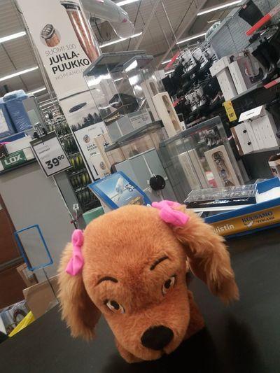 Curly stuffed dog - DaraDoggiDeCurly MiniMania Wintershopping  Insupermarket Stuffed Animals Winterliving