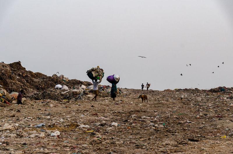 Landfill in New