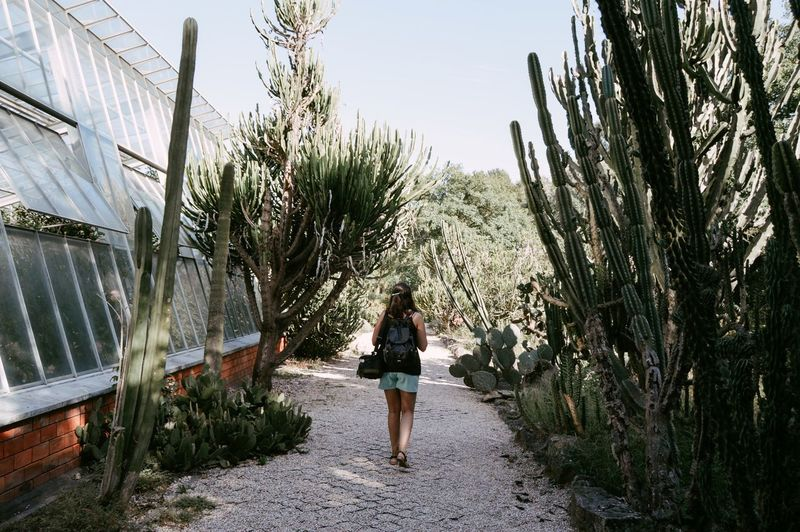 Cactus Wonderland Adult Adults Only Architecture Casual Clothing Day Full Length Growth Leisure Activity Lifestyles Nature One Person Outdoors People Plant Real People Rear View Sky Standing Tree Walking Young Adult Young Women