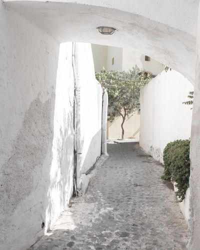 Architecture Built Structure The Way Forward Arch Indoors  Day No People Sunlight Whitewashed Santorini The Week On EyeEm EyeEmNewHere Santorini, Greece