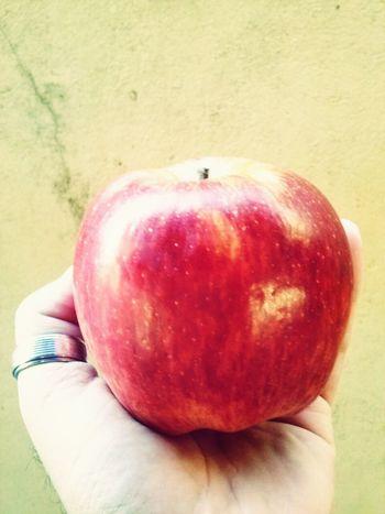 Apple Poisonfruit Snowwhite Forbiddenfruit