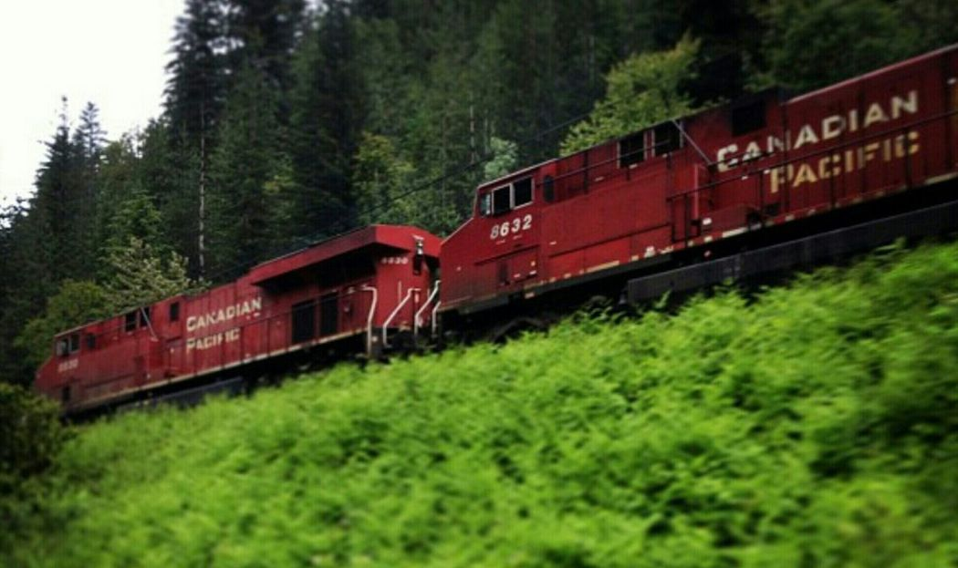 CP Rail Railway Nature_collection Canadiannature EyeEm Nature Lover On The Road Canadian Pacific Rail