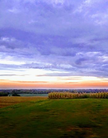 Field Sunset Landscape Scenics Dramatic Sky Nature Rural Scene Grass Beauty In Nature Outdoors Agriculture Cloud - Sky Purple Multi Colored Tranquil Scene No People Green Color Horizon Over Land Sky Horizon