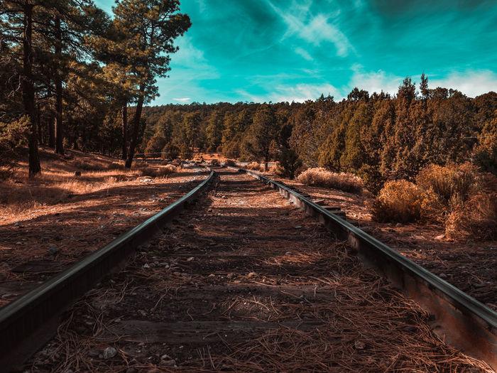 Low angle shot of train tracks at the grand canyon