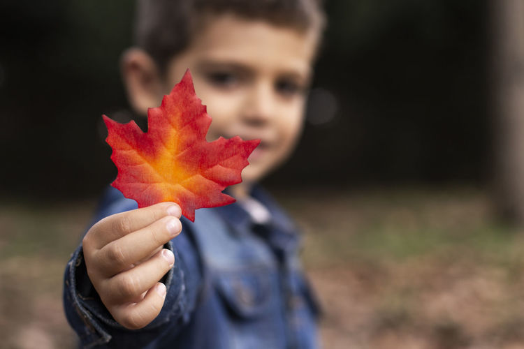 Portrait Of Boy Holding Leaf During Autumn