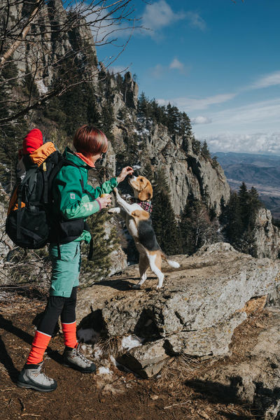 Nuca the beagle Animal Themes Bagpack Bagpacking Trip Beagle Beaglelovers Day Dog Domestic Animals Friendship Full Length Leisure Activity Lifestyles Nature One Animal One Person Outdoors People Pets Sky Standing Tree Water