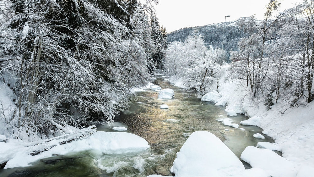 Dream Love Norway Travel Backpack Beauty In Nature Cold Temperature Day Drop Flowing Flowing Water Frozen Ice Landscape Motion Nature No People Outdoors River Snow Tree Water White White Color Winter