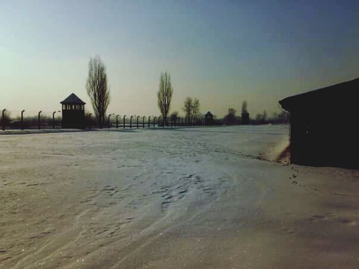 Winter Snow Cold Temperature Outdoors Razzismo Abandoned Olocausto Crueltyfree Genocide Suffering Secondworldwar Whereisthesun? Birkenau Birkenau Memorial