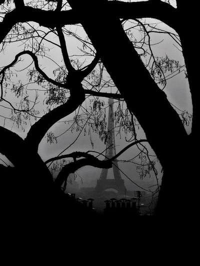 Eiffel Tower Toureiffel Paris Black And White Blackandwhite Noir Et Blanc Tree Trees
