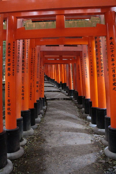 Architectural Column Architecture Day Doors In A Row Inari Shrine Japan Japan Photography Kyoto No People Outdoors Place Of Worship Red Religion Shrine Spirituality The Way Forward Tourism Travel Destinations