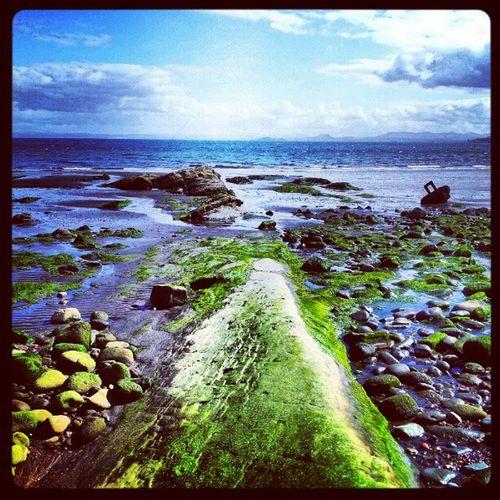 'Line of green' Ravenscraig Kirkcaldy Fife  Scotland Beach Seascape pebbles Cloudporn skyback sky skyporn igscout igscotland igtube igaddict Igers igdaily Tagstagram most_deserving iphonesia photographyoftheday instamood instagood instamob picoftheday bestoftheday Primeshots