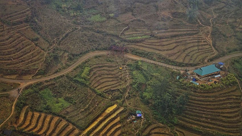 Sapa, Vietnam Travel EyeEm Nature Lover EyeEmNewHere Agriculture Farm Field Landscape Crop  Terraced Field Nature Rural Scene Rice Paddy High Angle View Mountain Growth Outdoors Aerial View Rice - Cereal Plant