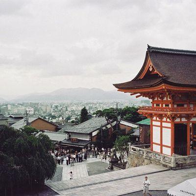 Japan Kyoto OSAKA City Trip Travel VSCO Vscocam Vscofilm Cymera Cymeraapp Film Filmstagram Filmphotography Contax Contaxt3 T3 Road