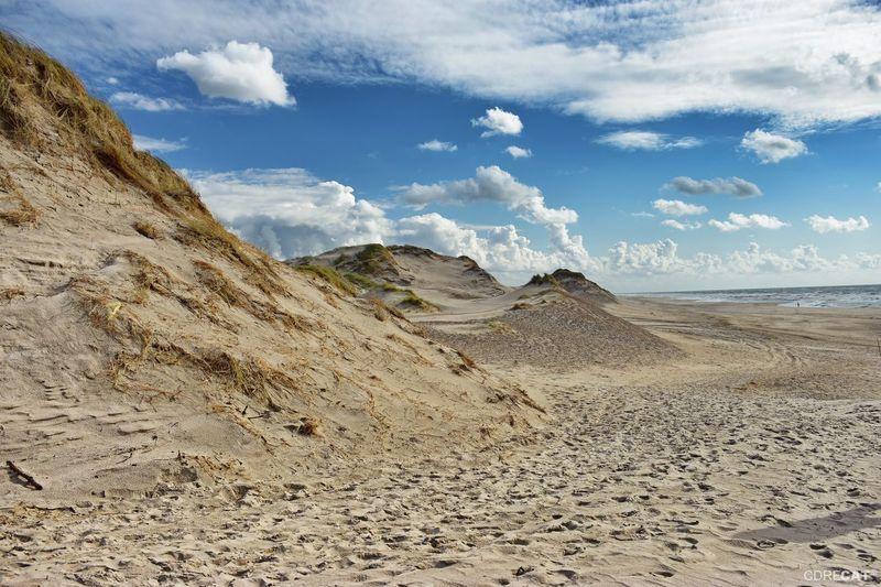 Bjerreborg Strand Denmark Denmark 🇩🇰 Landscape_Collection EyeEm Nature Lover EyeEm Masterclass Northsea Dunes Dunescape Beach Photography Sandy Beach Sand Sand Dune Beach Sky Landscape