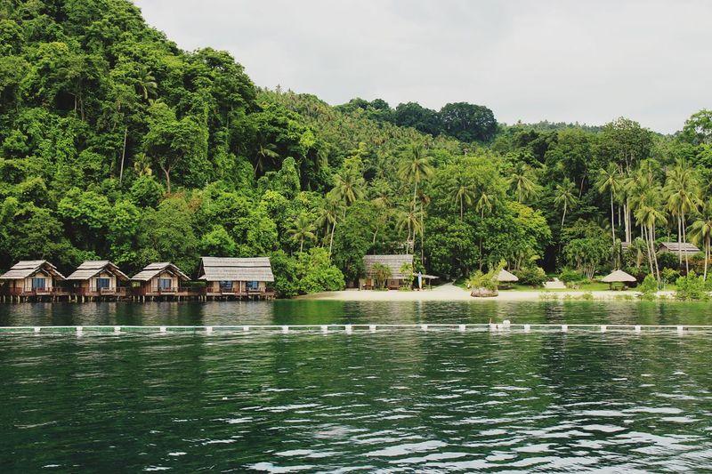 Samal Island Samal Island, Philippines Samal EyeEm Best Shots EyeEmNewHere EyeEm Nature Lover EyeEm Gallery EyeEm Selects Water Tree Outdoors Lake Green Color Day No People Nature Sky