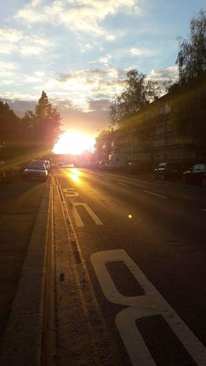 Giessen GERMANY🇩🇪DEUTSCHERLAND@ Sonnenuntergang Nature Foto Fotografieren Bushaltestelle Meinstadt