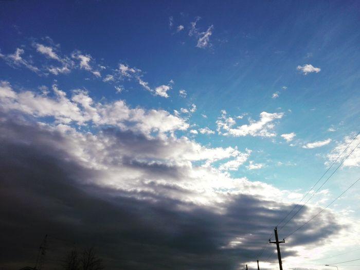 Blue Tree Sky