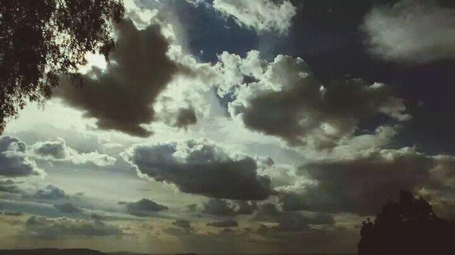 zacatecas sky