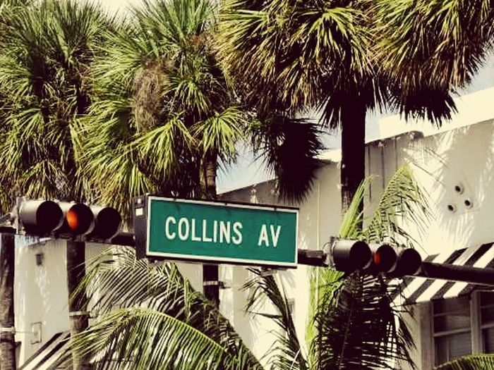 Redlight Collinsavenue Southbeachmiami Day Urban Exploration Urban Photography Miami Beach Palm Tree Tree Information Sign Sky Text No People Communication Growth Low Angle View Building Exterior Outdoors Cloud - Sky Road Sign Nature