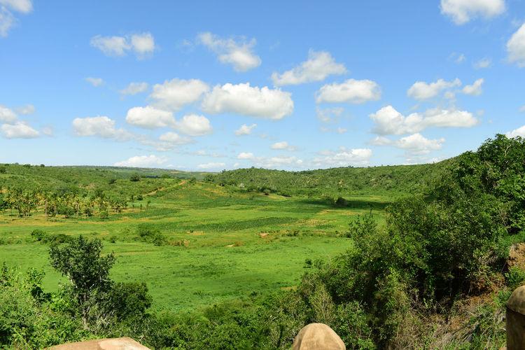 Cloud Green