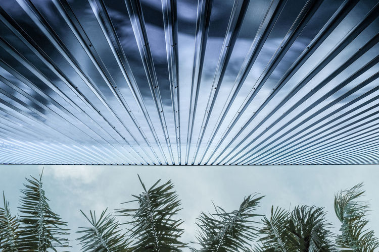 BLUE STEEL Industrial Nature And Architecture Palm Tree Clouds And Sky Contrast Looking Up Metal Metal Cladding Metallic