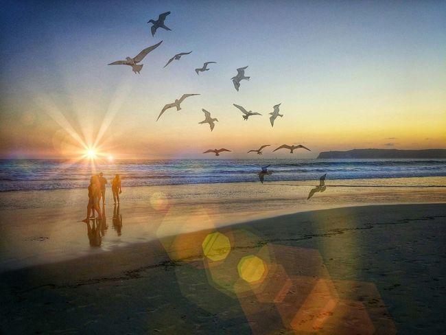 Happy Friday...💛💛💛 Sunset Fun With Editing :) Conoradobeach Sandiego_ca sunrise_su