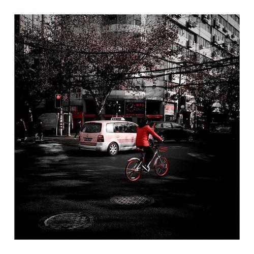 12号线 Baical Red Color Transportation Land Vehicle Day Outdoors Sky Real People People City Building Exterior Tree