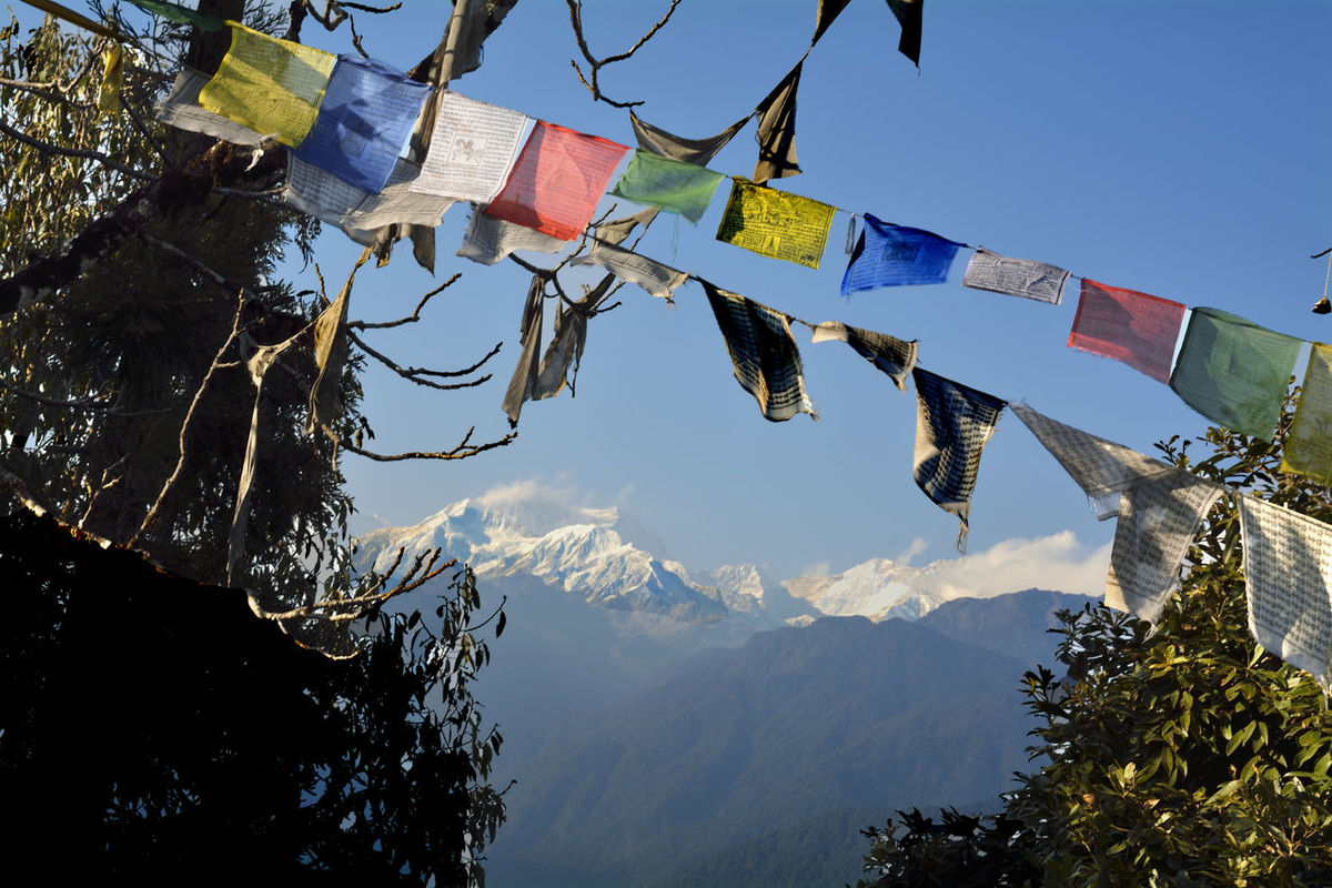 Buddhism Monastery Sikkim Tourism Buddhism Temple Tourist Destination Sikkimtourism Pelling Sikkimdiaries Sikkim,india Day Power In Nature Outdoors Scenics Beauty In Nature India Buddhist Monastery Incredibleindia Indiatourism Incredible India PrayerFlags Prayer Flags  Sky Flag Mountain Peak