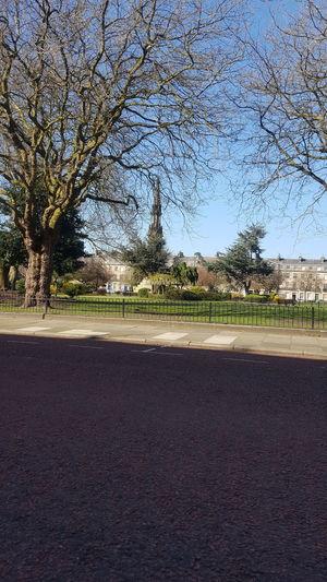 Hamilton square Historic Gardens Tree Clear Sky Sky