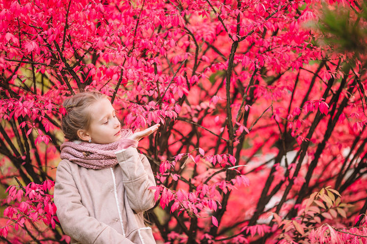 Low angle view of child on pink flowering tree