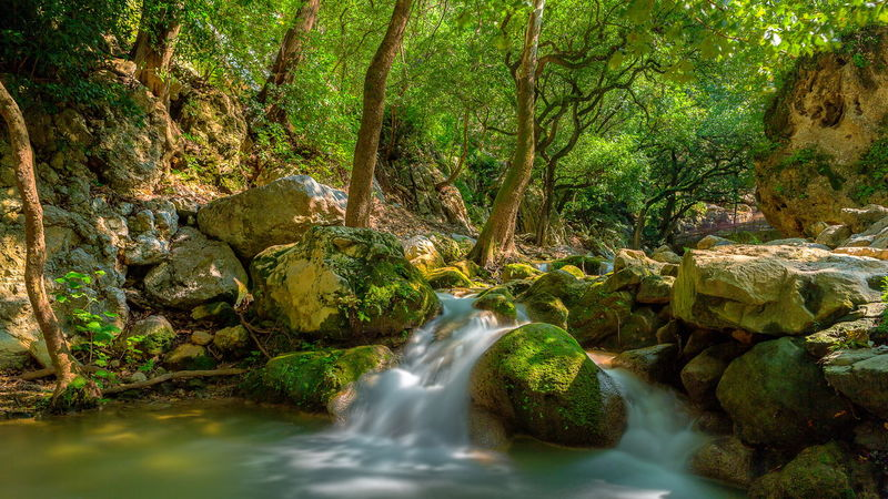 Beauty In Nature Cola De Caballo Flowing Flowing Stream Flowing Water Forest Long Exposure Nature Outdoor Outdoors Stream Waterfall The Great Outdoors - 2016 EyeEm Awards