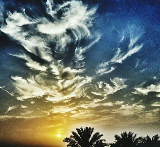 Cloud - Sky Sky Scenics Dramatic Sky Silhouette Cirrus Tree Beauty In Nature Sunset Dubai Desert Travel Palm Tree Palm Tree Silhouette Sunset Sunset Silhouettes Outdoors Clouds & Sky Welcome To Black EyeEmNewHere The Great Outdoors - 2017 EyeEm Awards Perspectives On Nature Postcode Postcards
