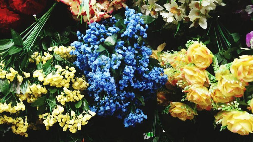 Fake flowers supermarket Flower Close-up Market No People Multi Colored Plastic Flowers Retail  The Week On EyeEm