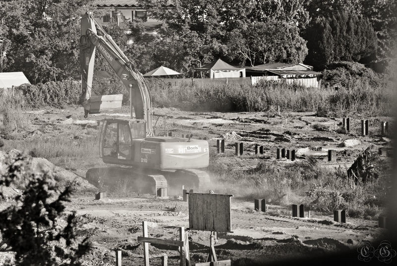 Canon70d Construction Dust Excavator Freedom Machine Monochrome Noise Tree Zoom