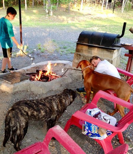 Explaining why dogs can't eat s'mores... Graham Crackers Grahamcrackers Marshmallow Time!  Marshmallows Camping Fun Camping Fire Camping Life Camping Out Campinglife Camping Conversation Hopeful Talking To The Dog Smores Campfire Childhood Memories Kids And Pets Kids Being Kids Bonding With Animals Kids Photography Kids Having Fun Dogs Kids And Dogs Dogs And Kids Dog Life Real People Canine Domestic Pet Owner Leisure Activity