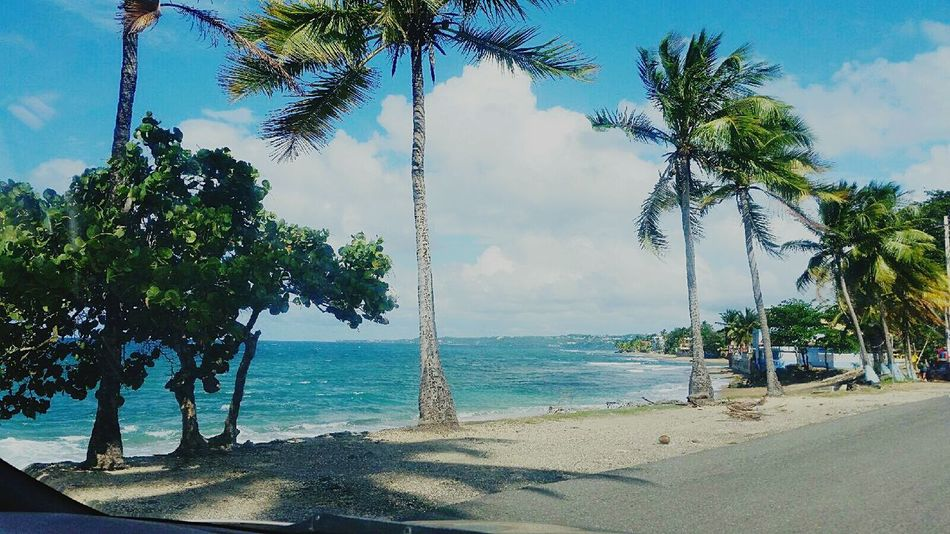 WeatherPro: Your Perfect Weather Shot Clouds And Sky Beach a:22204] winter in Puerto Rico The Great Outdoors - 2015 EyeEm Awards