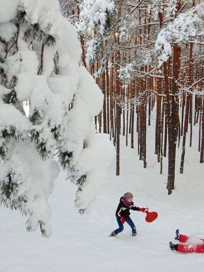 Winter Snow Cold Temperature Warm Clothing Full Length Tree Leisure Activity Nature Deep Snow Beauty In Nature Vacations Winter Sport Mountain Outdoors Ski Holiday One Person Scenics Sport Snowboarding People Forest Landscape Latvija Latvia Riga
