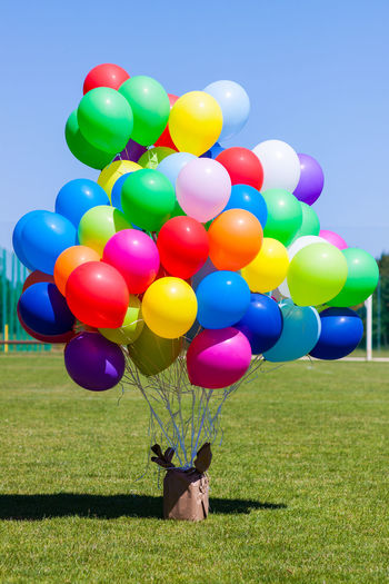 Multi Colored Balloons At Grassy Field