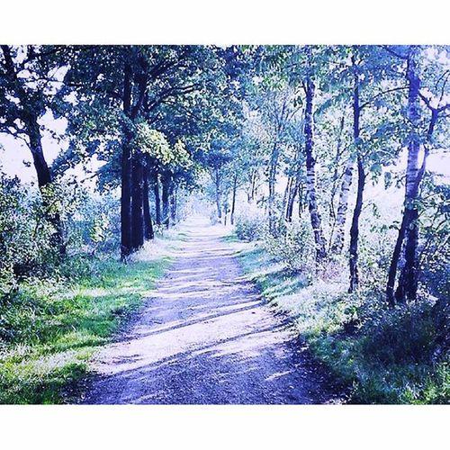 Soms is de weg eenzaam maar laat je daardoor niet tegenhouden zolang je je eigen weg volgt ben je goed bezig!