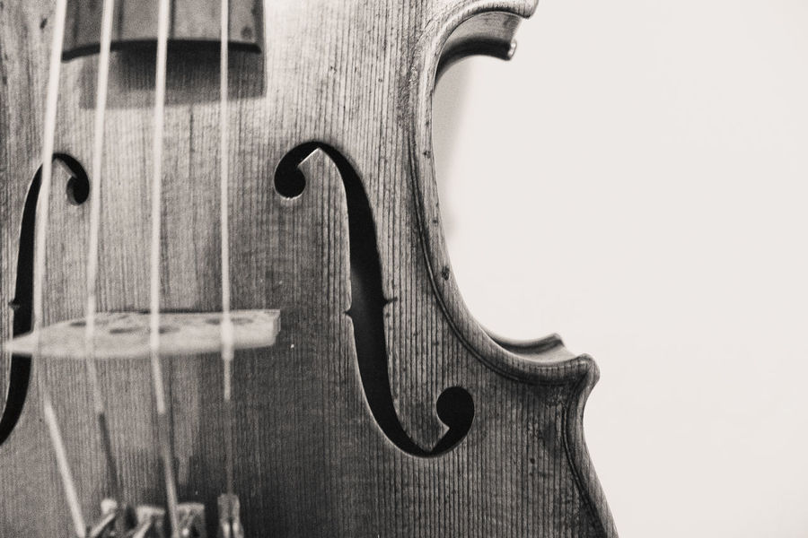 Violin details Classical Music Curl Music String The Week On EyeEm Wood Classical Music Classical Musician Classical Style Close-up Detail Fretboard Instrument Instrument Maker Music Musical Equipment Musician No People String Instrument Violin Violin Curl Violin Strings Violinist White Background Wood - Material