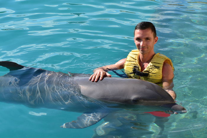 Dolphin Swimming Pool Happiness Smiling One Person Fun Dolphinswim Floating On Water