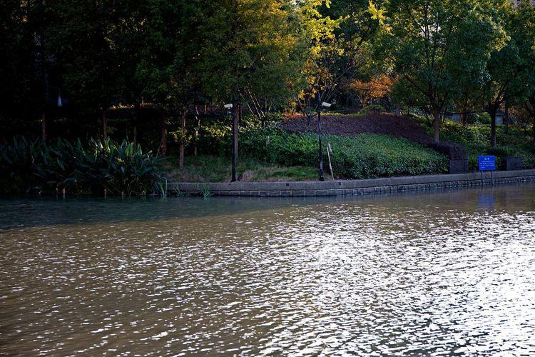 Swimming pool by lake