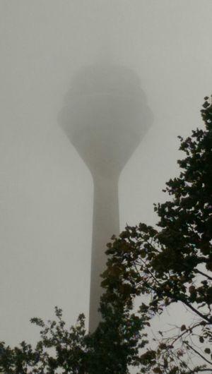 The Rheinturm  in Düsseldorf hidden in morning mist. Nofilter#noedit