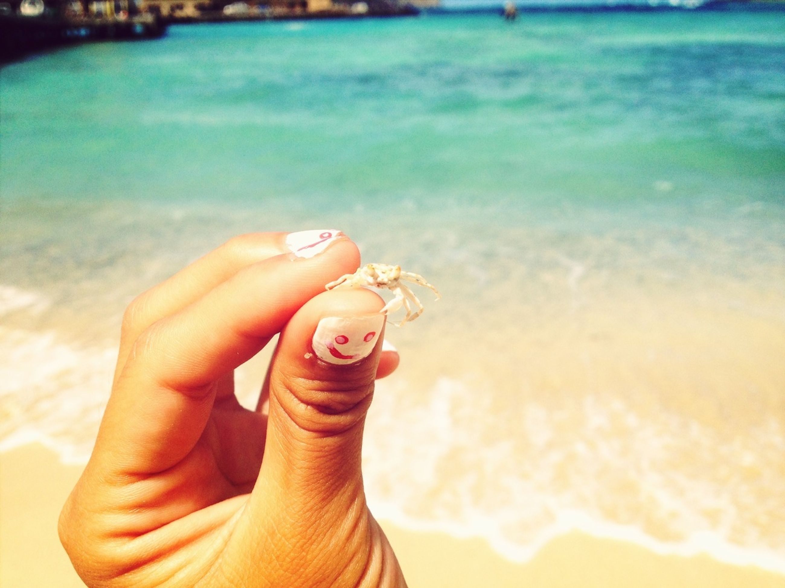 water, sea, beach, lifestyles, person, leisure activity, focus on foreground, part of, vacations, holding, shore, close-up, sand, cropped, outdoors, refreshment