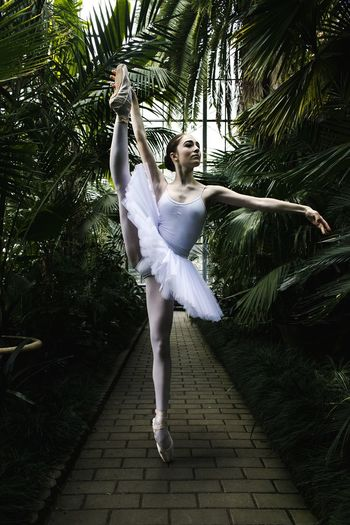 Ballet dancer dancing amidst palm trees