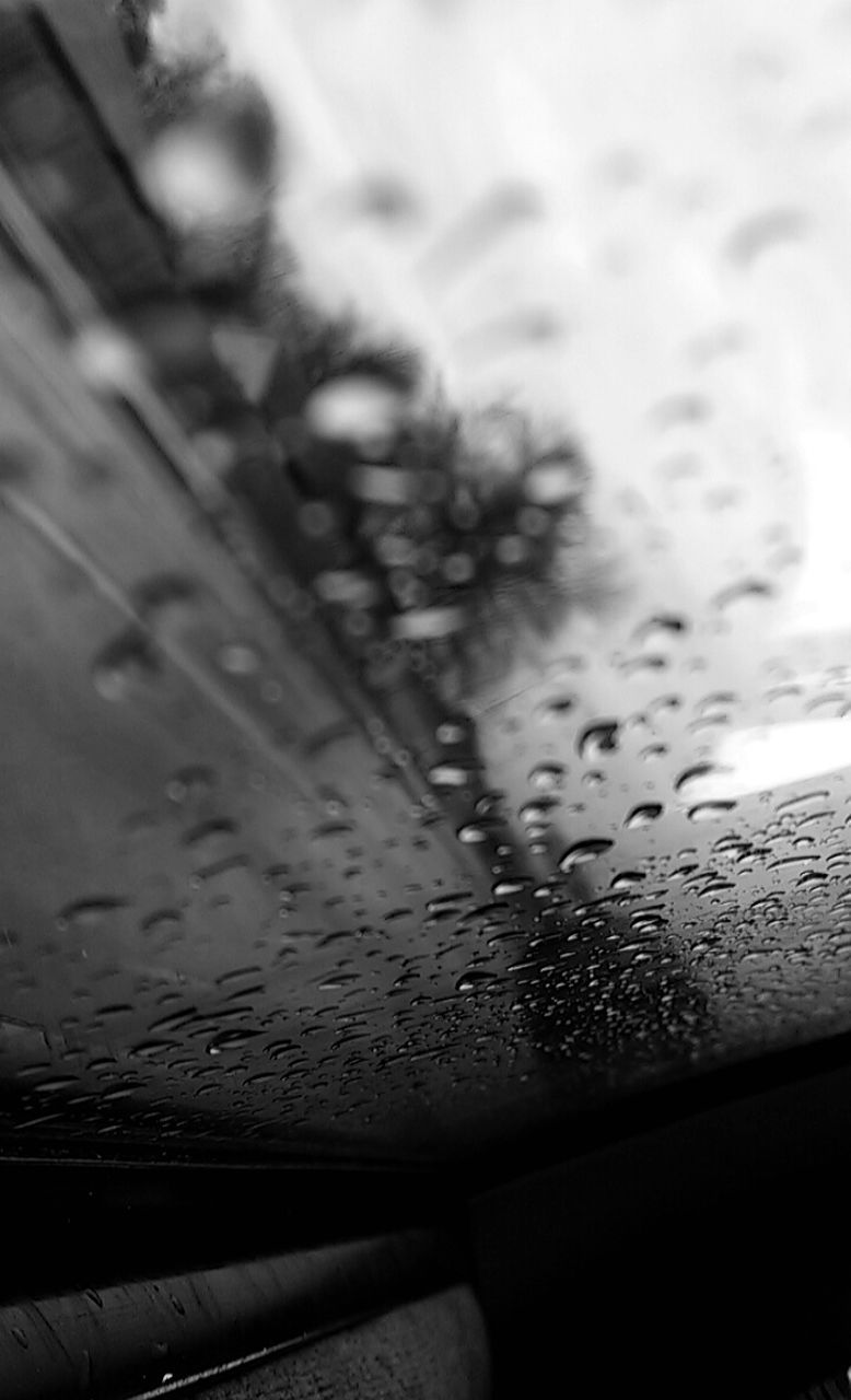 wet, drop, no people, close-up, indoors, water, day, nature, sky