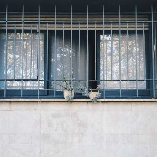 Window With Grate