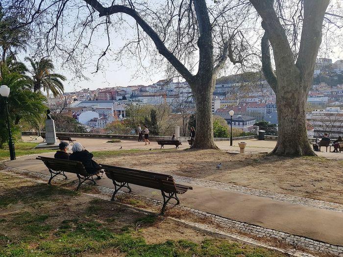 Jardim Do Torel Jardim Lisbon Lisboa Miradouro Torel Lookout Travel