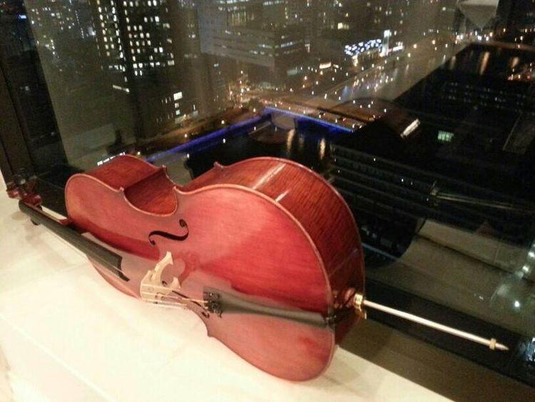 Cello Window Nite Lights